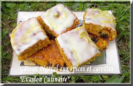 gateau_vegetal_carottes