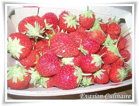 fraise_gariguette.jpg