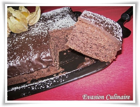 gateau-chocolat-2-oeufs